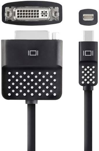 Adapter DisplayPort / DVI [1x Mini-DisplayPort stekker - 1x DVI-bus 24+5-polig] Zwart Belkin