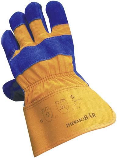 Griffy 1633 Splitsleren handschoen THERMOBÄR Splitsleer Maat (handschoen): 10, XL