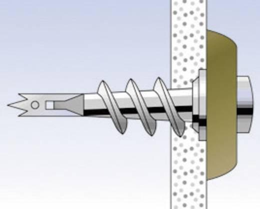 Gipsplaatplug Fischer GKM 31 mm