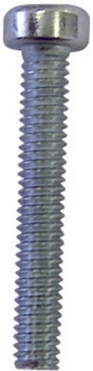 TOOLCRAFT Cilinderschroeven M3 8 mm Torx ISO 14579 Staal verzinkt 100 stuks