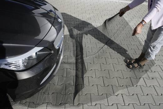 Marterwerend tapijt 190 x 150 cm 10108