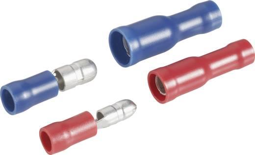 323005 Kabelschoen-assortiment 0.205 mm² 2.50 mm² Blauw, Rood 20 stuks