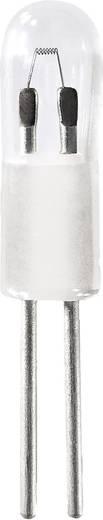 Maglite Reservelamp Solitaire 2 stuks, geschikt voor Solitaire