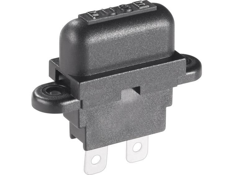 Basetech Steekzekeringhouder (auto) Platte zekering standaard Aantal polen 1 30 A 1 stuks
