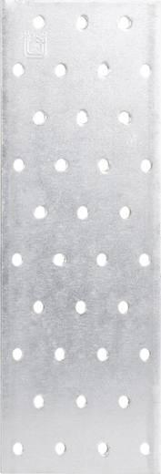 TOOLCRAFT Geperforeerde platen 80 x 200 mm 200 mm Staal 1 stuks