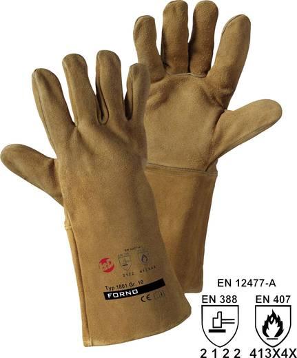 Leipold + Döhle 1801 Spalt-F varkensleren handschoen Bovenmateriaal: splitleder Maat (handschoen): 10