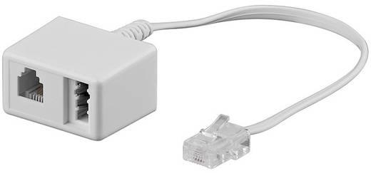 ISDN, Telefoon Adapter [1x RJ45-stekker 8p4c - 1x Telefoonkoppeling Duitsland (TAE-N), RJ11-bus 6p4c] 0.20 m Wit