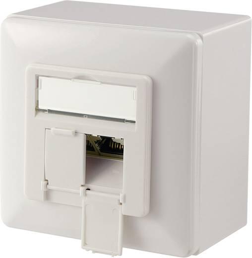 Digitus Professional DN-9007-S-1 Netwerkdoos Opbouw CAT 6 2 poorten Zuiver wit