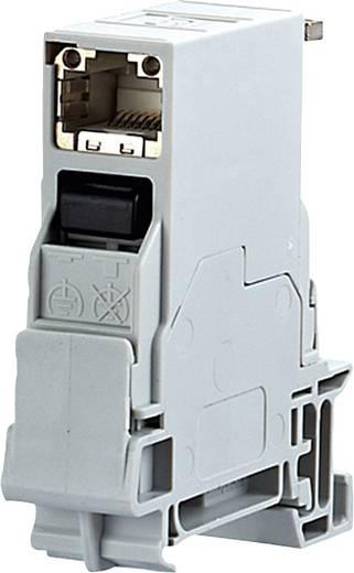 BTR-netwerkdoos voor DIN-railmontage CAT 6 insteekrichting 90° RAL 7035