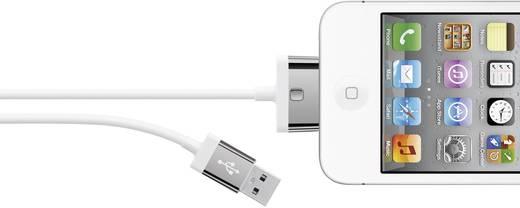 Belkin iPad/iPhone/iPod Aansluitkabel [1x USB 2.0 stekker A - 1x Apple dock-stekker] 2 m
