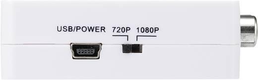 SpeaKa Professional Cinch / HDMI Converter [3x Cinch-koppeling - 1x HDMI-bus] Wit