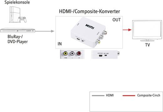 SpeaKa Professional HDMI / Cinch Converter [1x HDMI-bus - 3x Cinch-koppeling] Wit
