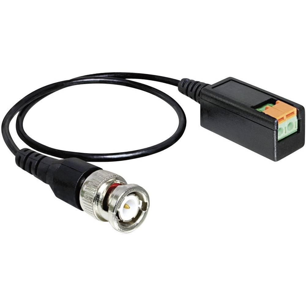 DeLOCK Delock Kabel BNC Stecker > Terminalblock 2 Pin 30 cm (83181)