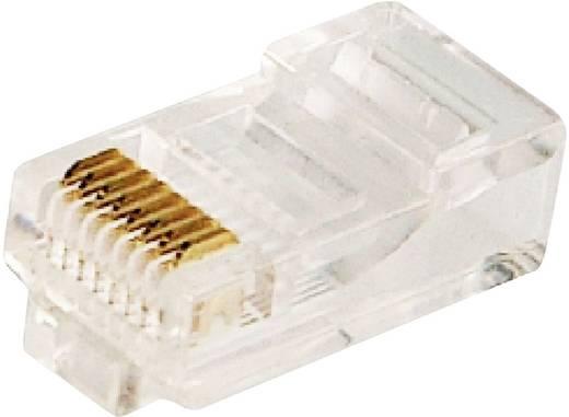 RJ45-connector CAT5e Stekker, recht Aantal polen: 8P8C