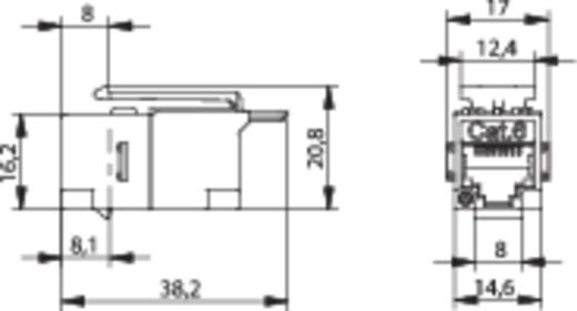 RJ45-inbouwmodule Keystone CAT 6 Telegärtner