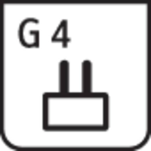 Halogeen G4 20 W Stiftfitti
