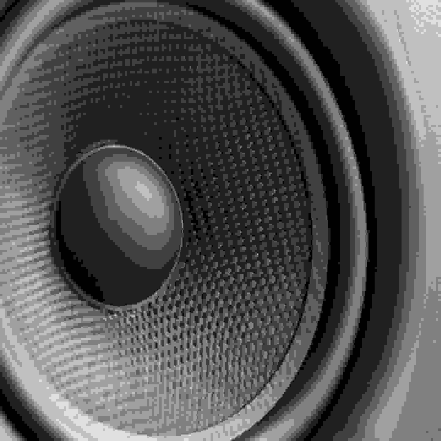 Fasnachtswagen - Musik zum mit tanzen und singen gehört auf fast jeden Umzugswagen