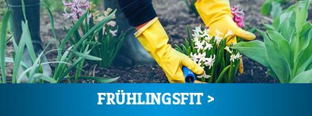 Frühlings-Fit