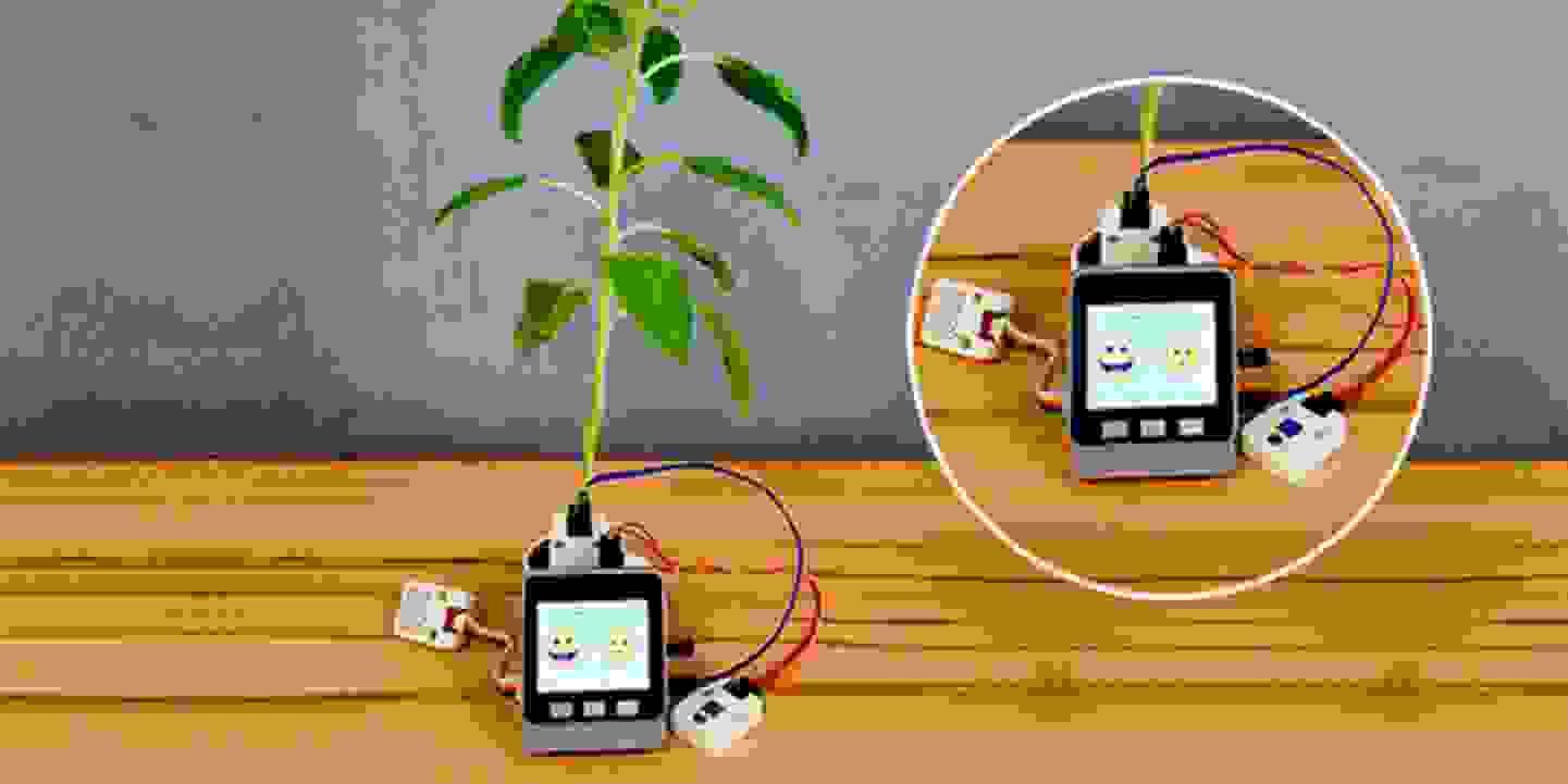 Smart Plant -  Planzenbewässerung im Zeitalter des IOT