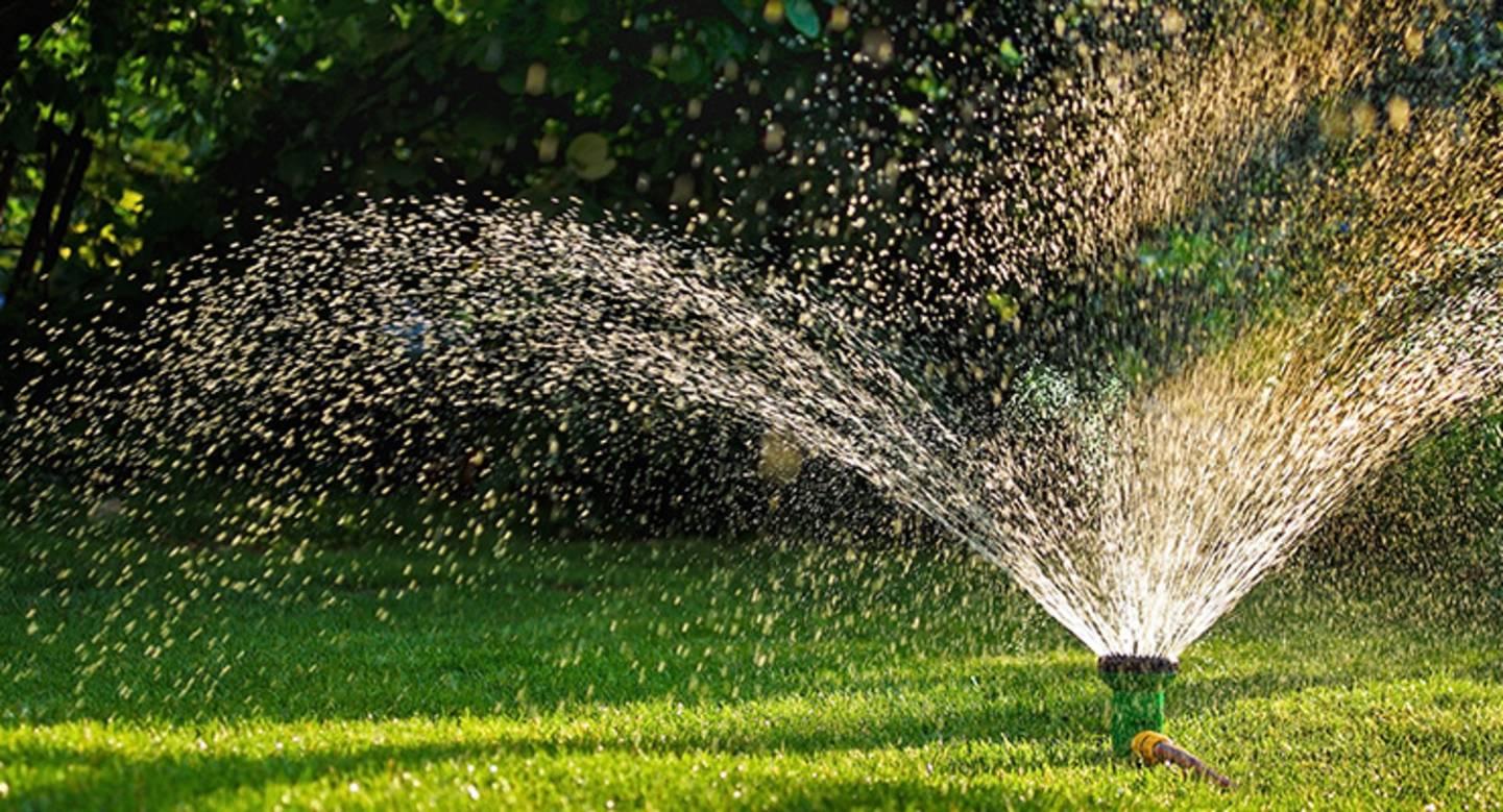 Alles zu Gartenbewässerung ansehen »
