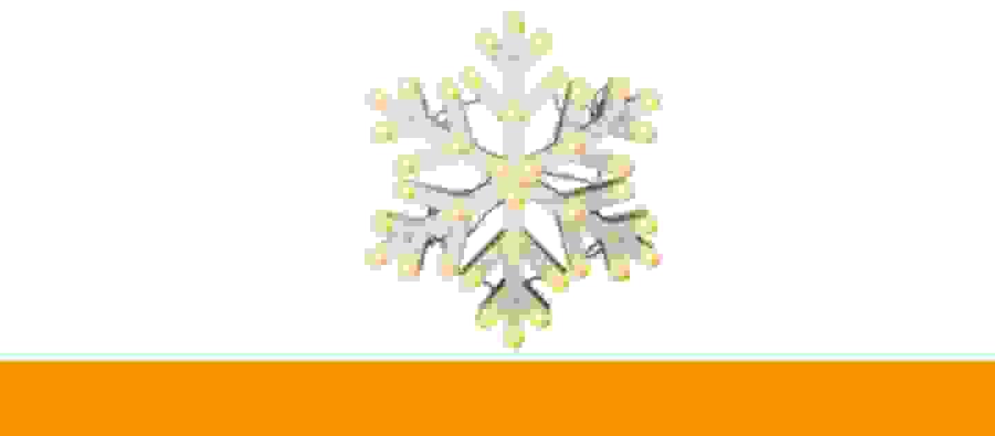 Polarlite Weihnachtsdeko