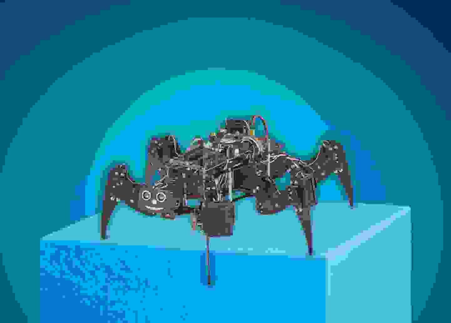 Makerfactory - RoboBug Bausatz »