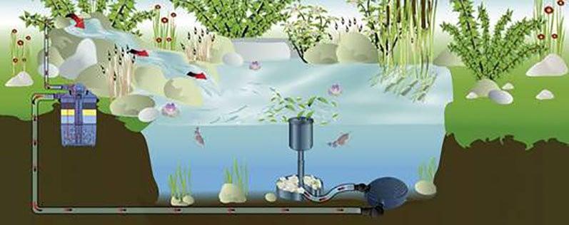 Teichfilter für optimale Teichpflege unverzichtbar