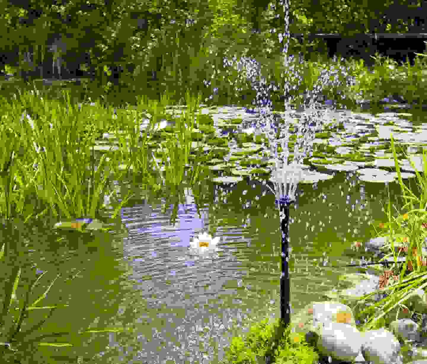 Renkforce - Springbrunnenpumpe »