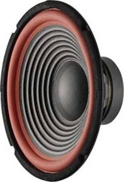 10 Zoll Lautsprecher-Chassis