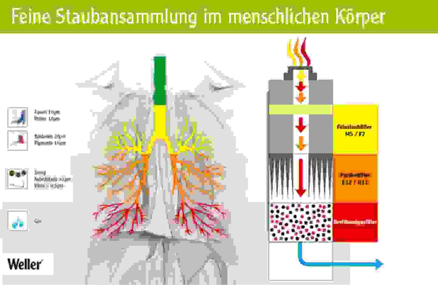 Feine Staubansammlung im menschlichen Körper