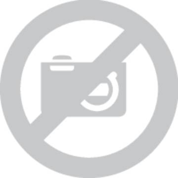 Speaka Professional Lautsprecher Chassis