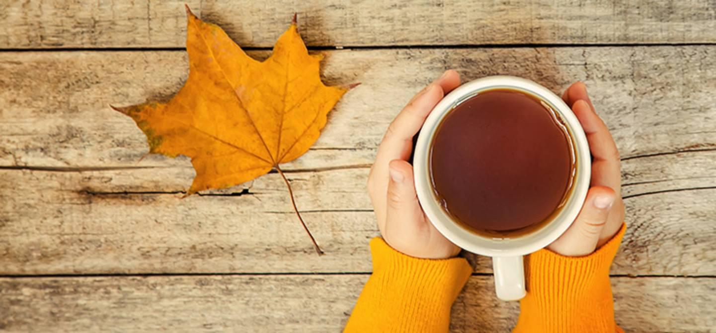 Herbst bedeutet: Die Teesaison ist eröffnet