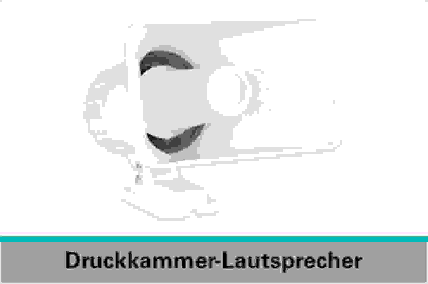 Speaka Professional Druckkammer-Lautsprecher