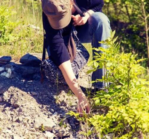 Geocaching ist ein beliebtes Hobby in der Natur