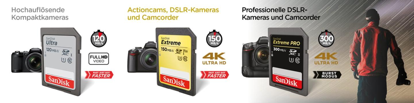 Sandisk SD-Speicherkarten
