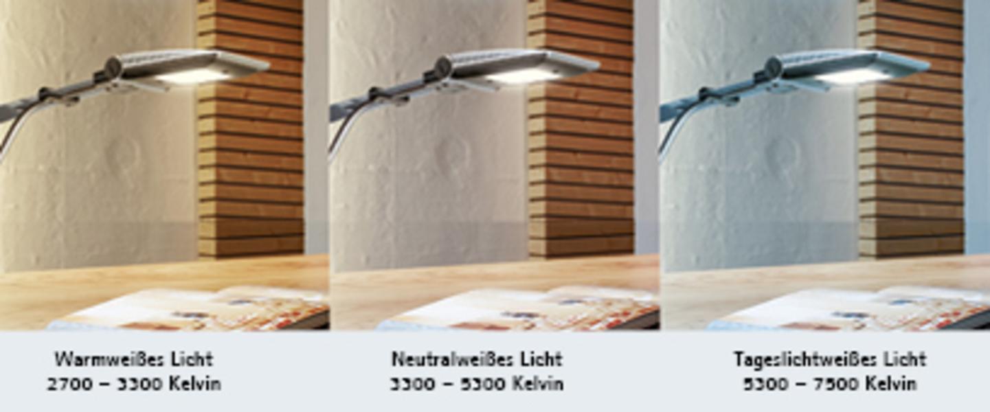 Licht_Info