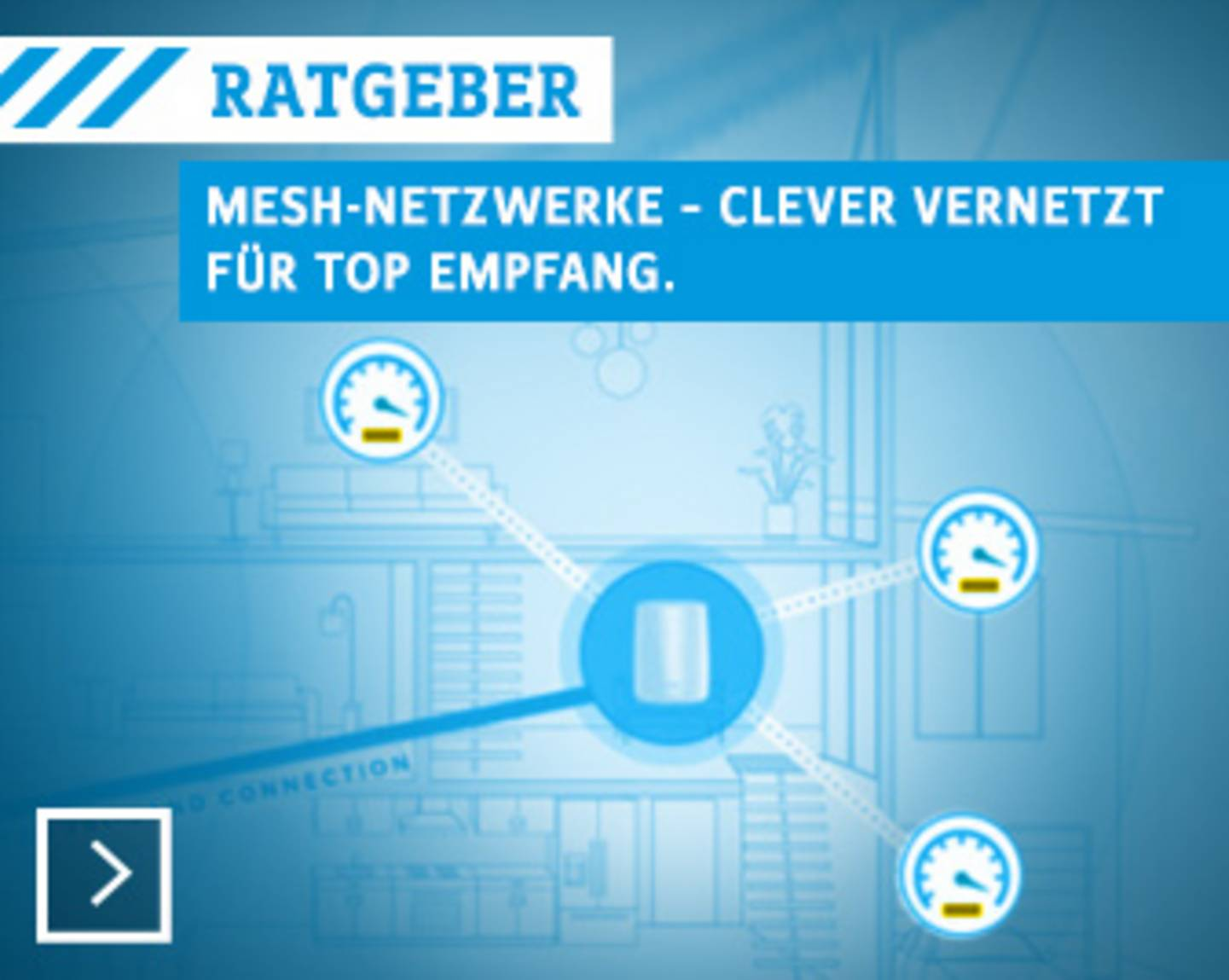 Ratgeber Mesh-Netzwerke