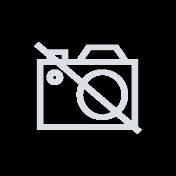 Bosch Standmixer Vitamaxx