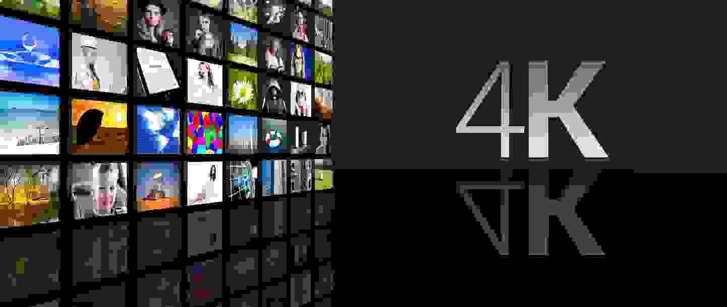 Adobe Stock © leszekglasner
