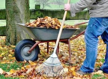 Auch für die Aufbewahrung von Gartenwerkzeugen sind Lochplatten geeignet.