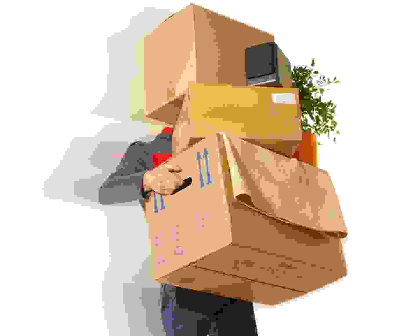 Organisieren - Ausmisten - Einpacken - Packen