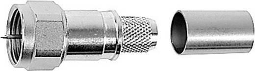 Das Foto zeigt einen üblichen F-Stecker