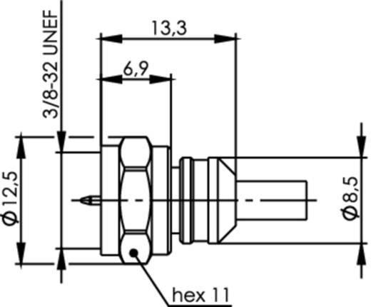 Das Foto zeigt eine schematische Darstellung eines F-Steckers