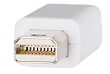 Mini-Displayport-Stecker
