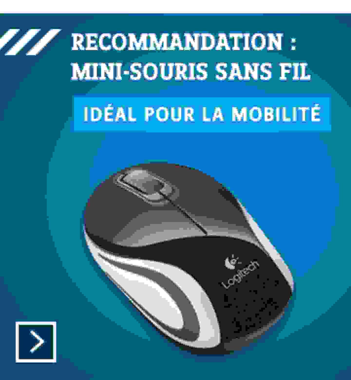 Logitech - Mini-souris sans fil