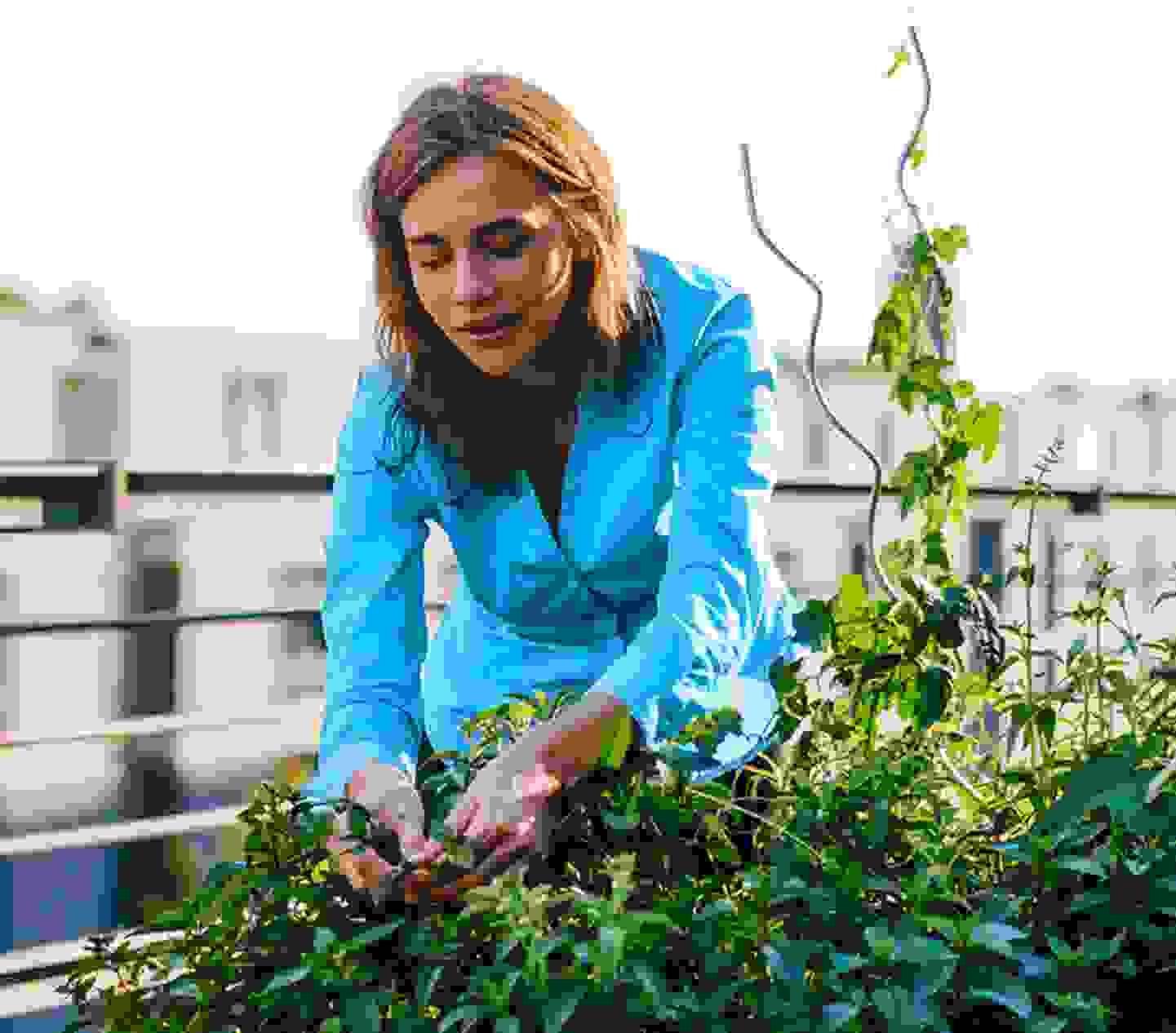 Projets de jardinage à faire soi-même »
