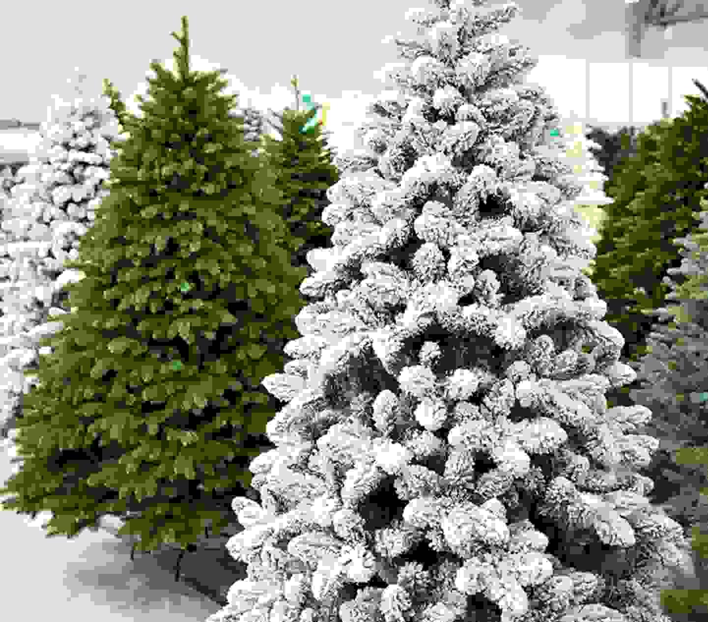 Voir les sapins de Noël artificiels »