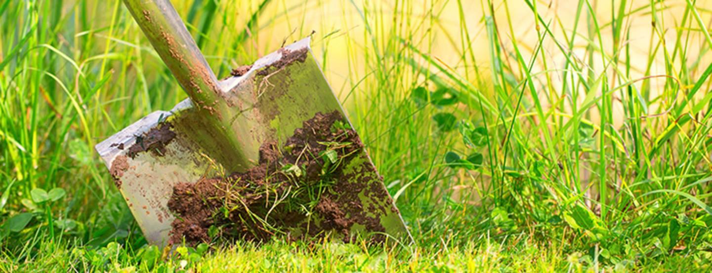 Mettre en valeur le jardin avec un chemin - Avec des crochets, il est facile de fixer les repères »