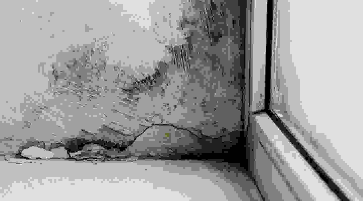 Conséquences des ponts thermiques - Humidité et moisissures