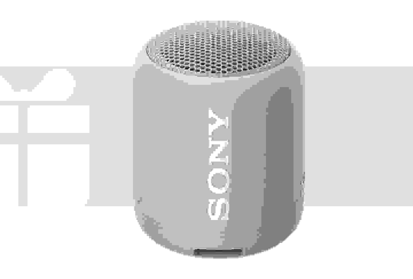 Sony - Enceinte Bluetooth® outdoor, résistant à l'eau et la poussière, grise